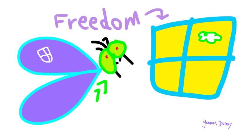 FreedomAndTheFly